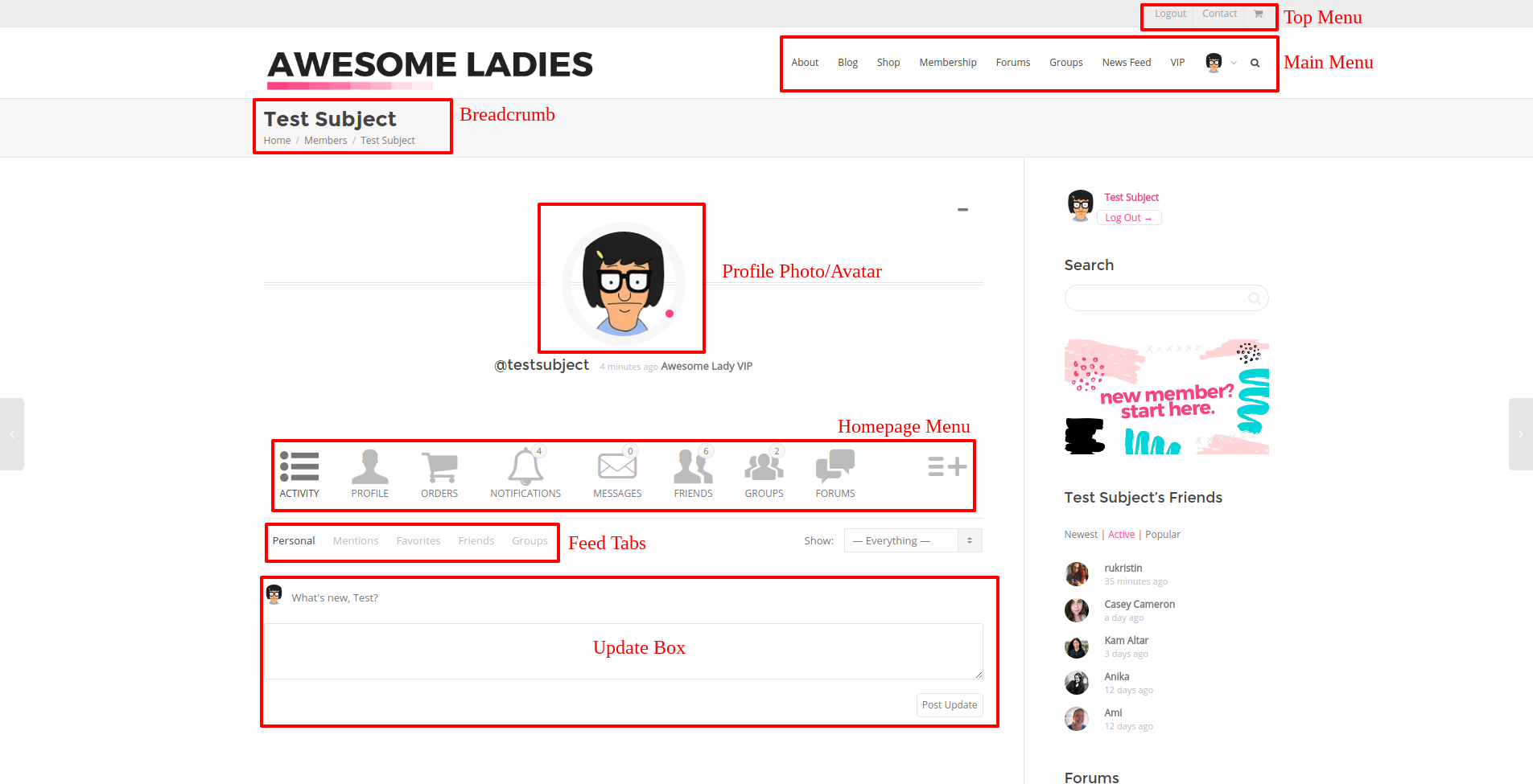 The Awesome Ladies Project Profile Screenshot